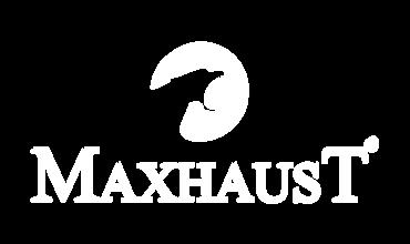 Maxhaust Soundmodul